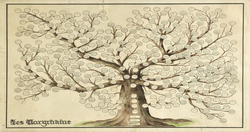 aplicatii-genealogice