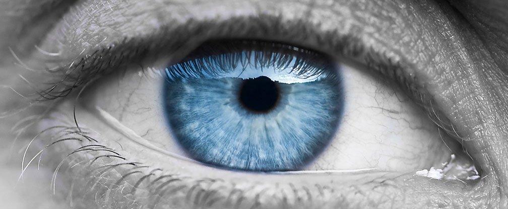 celule-stem-vindeca-orbirea